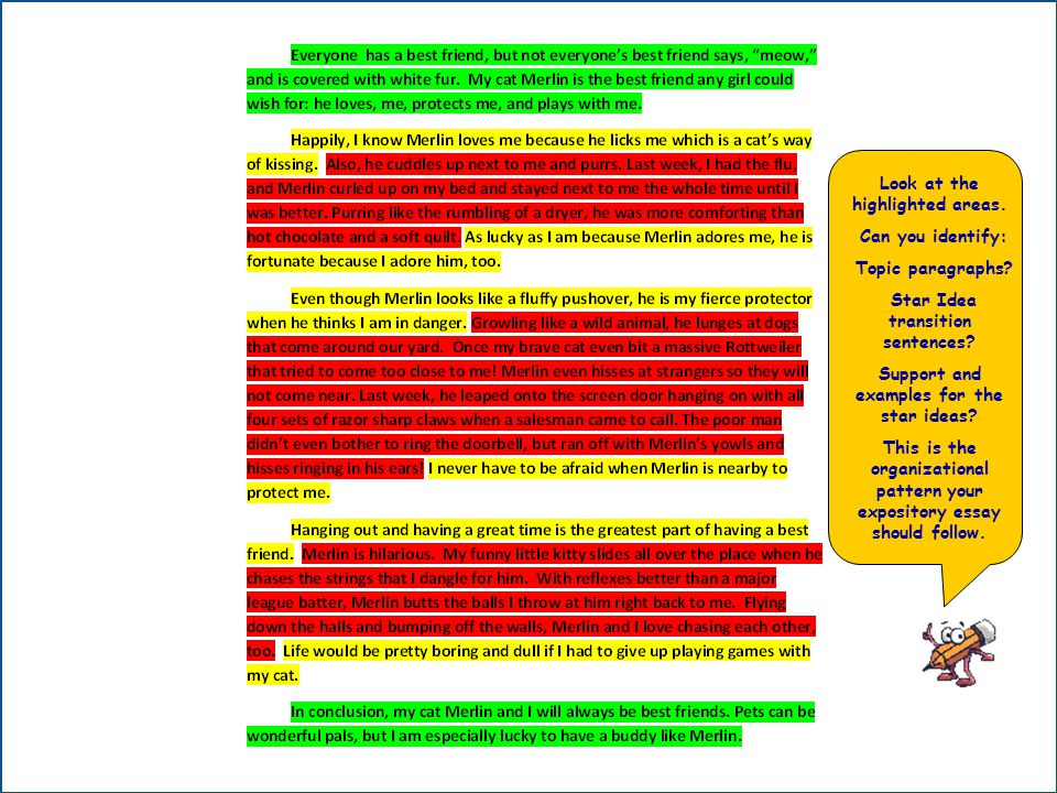 Look at the highlighted areas. Can you identify: Topic paragraphs