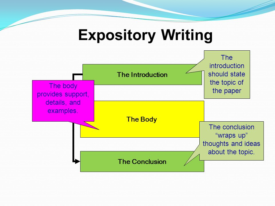 Expository Writing The introduction should state the topic of the paper. The Introduction. The body provides support, details, and examples.