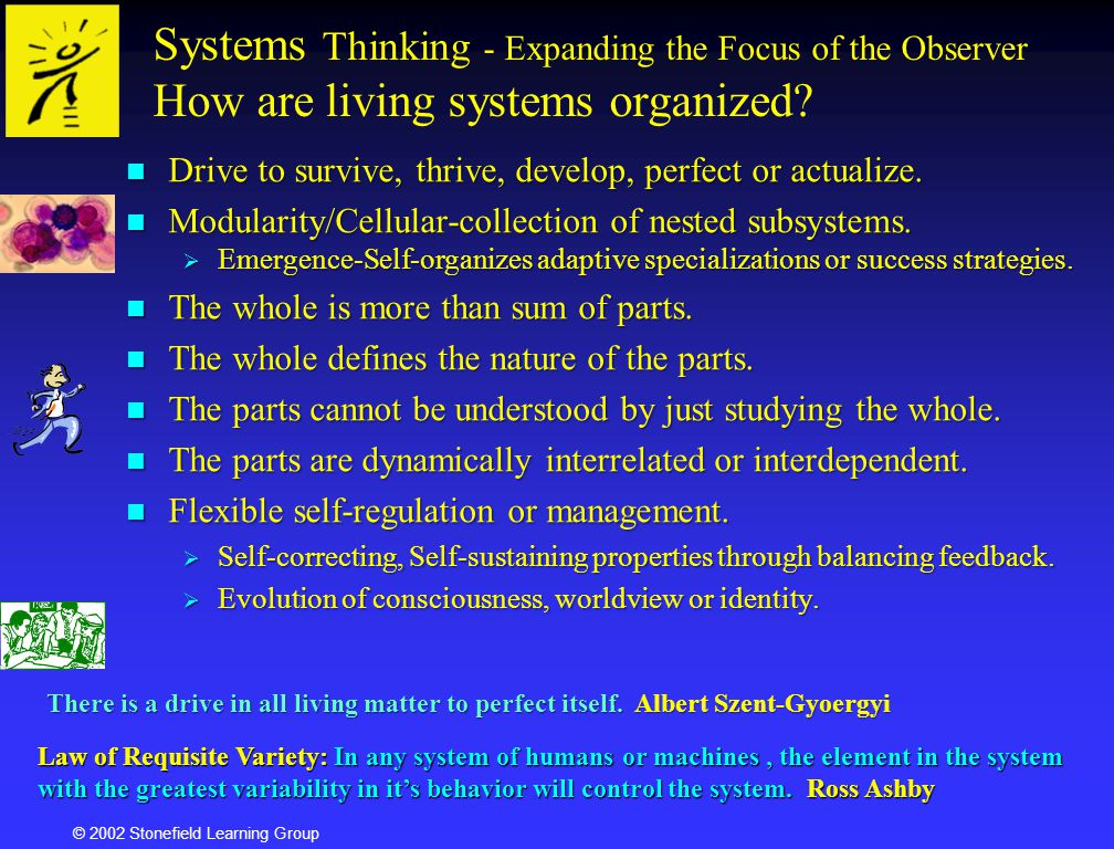 Systems Thinking - Expanding the Focus of the Observer How are living systems organized