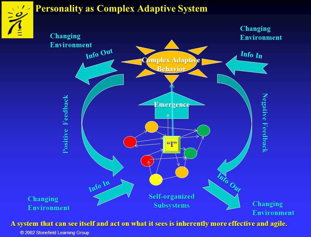 Personality as Complex Adaptive System