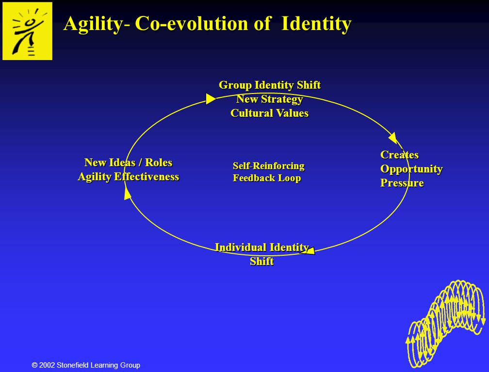 Agility Effectiveness