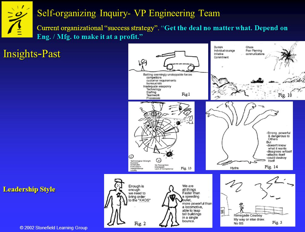 Self-organizing Inquiry- VP Engineering Team
