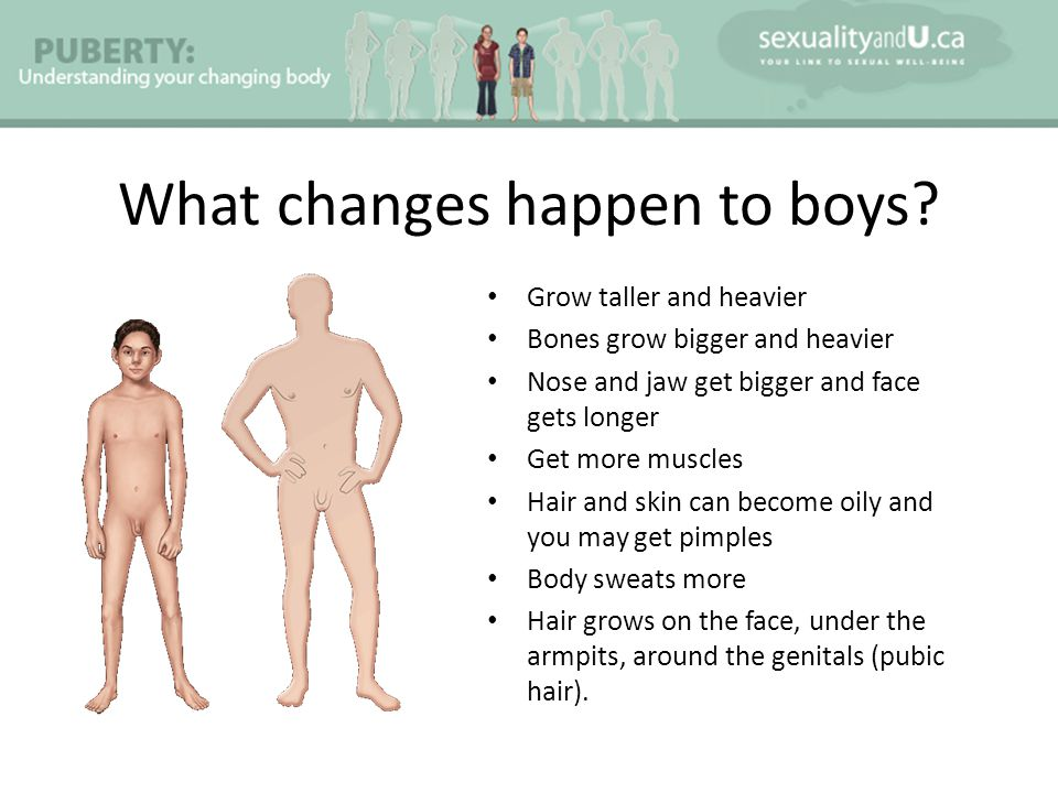 What changes happen to boys