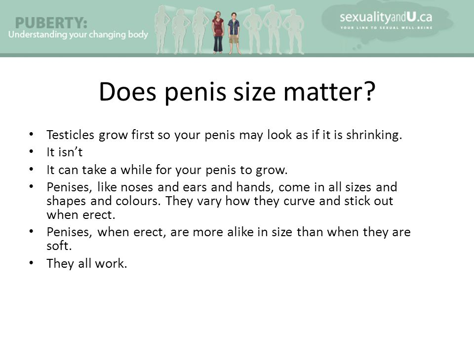 Does penis size matter Testicles grow first so your penis may look as if it is shrinking. It isn't.