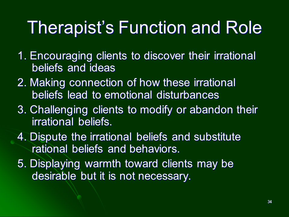Therapist's Function and Role