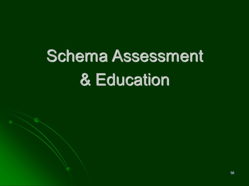 Schema Assessment & Education