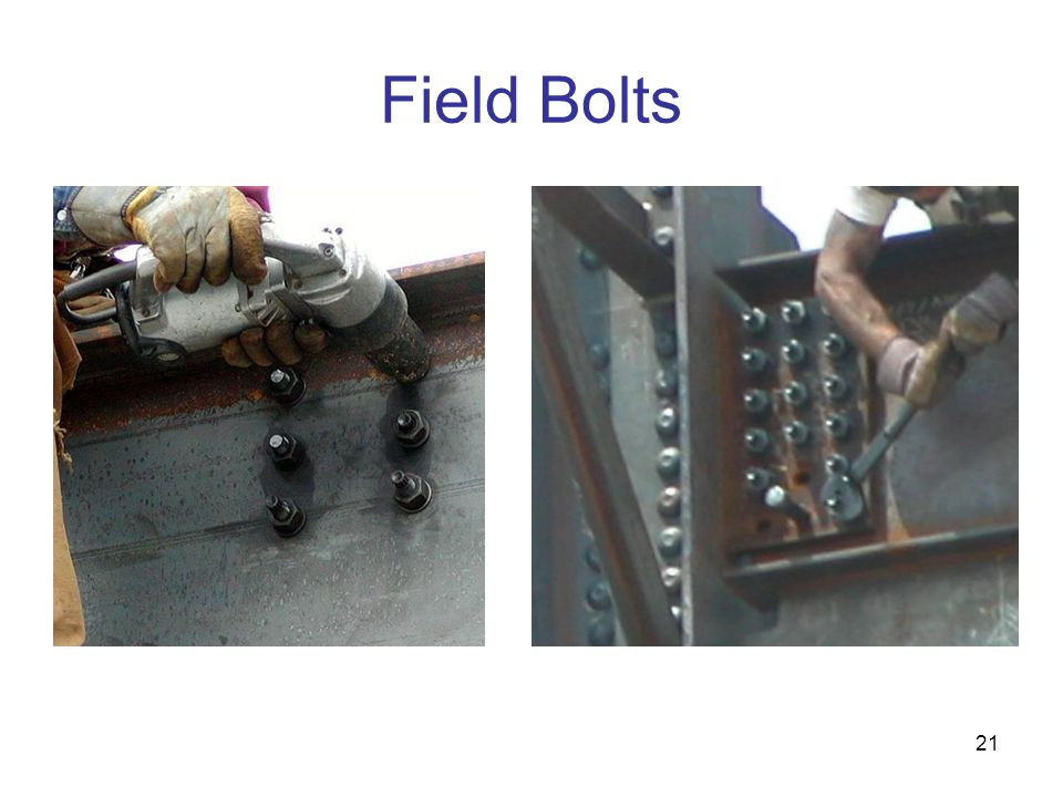 Field Bolts