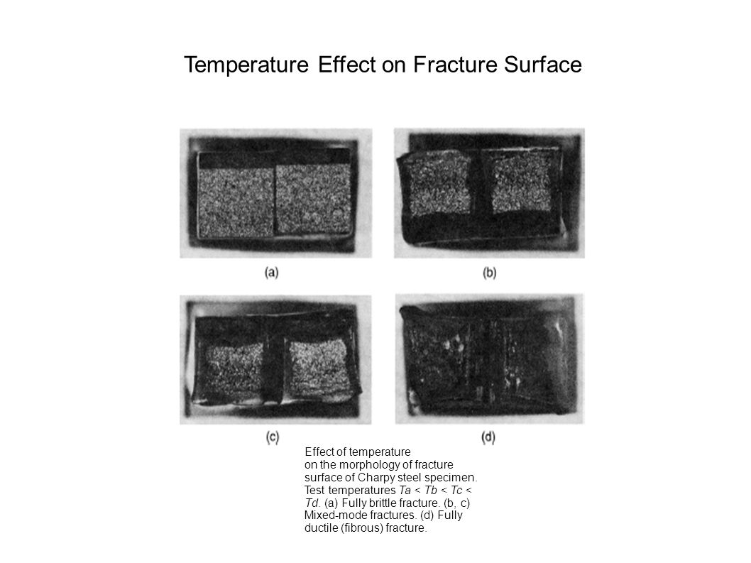 Temperature Effect on Fracture Surface