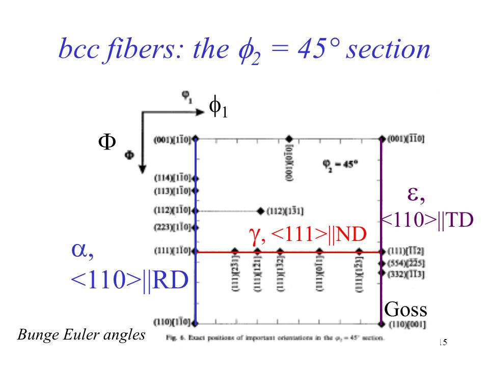 bcc fibers: the f2 = 45° section