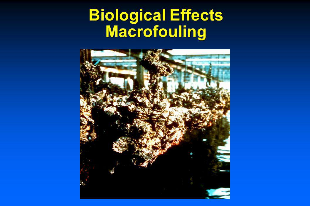 Bacteria Effects - MIC (Microbiologically Induced Corrosion)