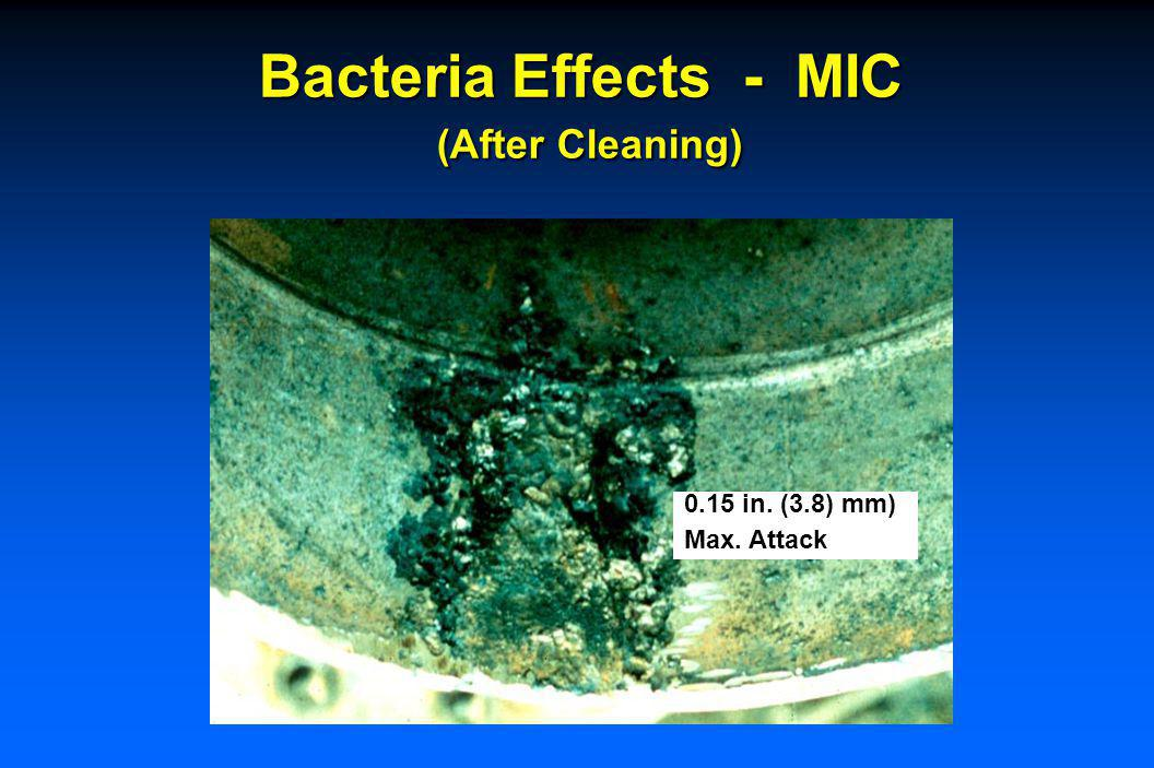 Bacteria Effects - MIC (After Cleaning - No Attack)