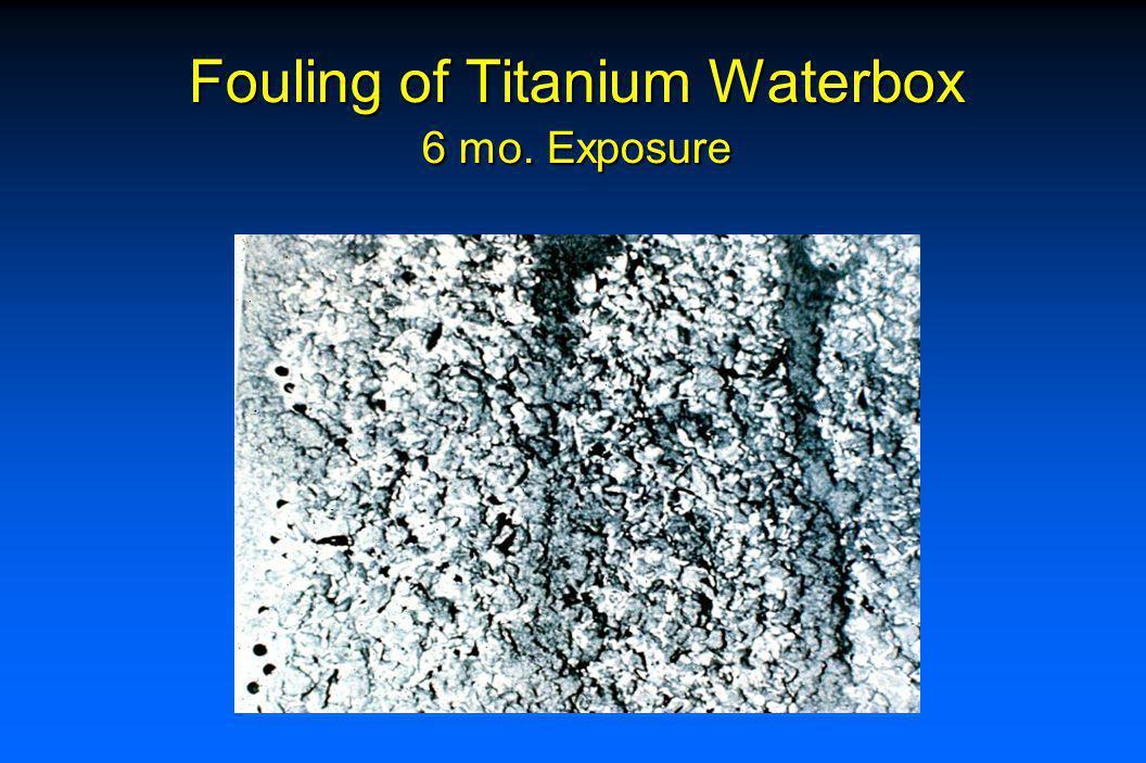 Effect of Chlorination <1 fps Seawater Flow