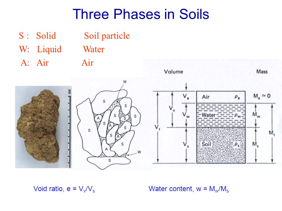 Three Phases in Soils S : Solid Soil particle W: Liquid Water