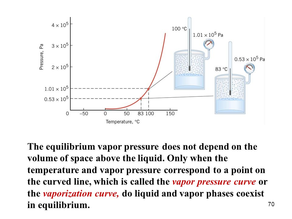 The equilibrium vapor pressure does not depend on the volume of space above the liquid.
