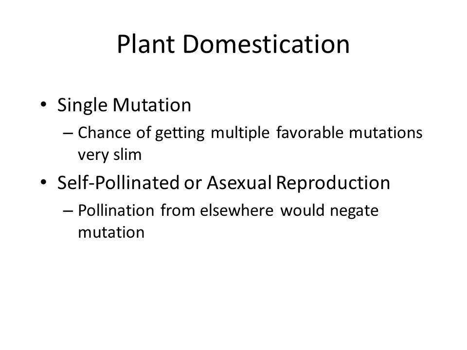 Plant Domestication Single Mutation