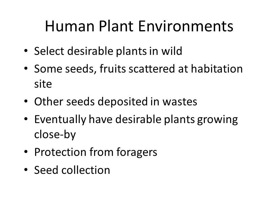 Human Plant Environments