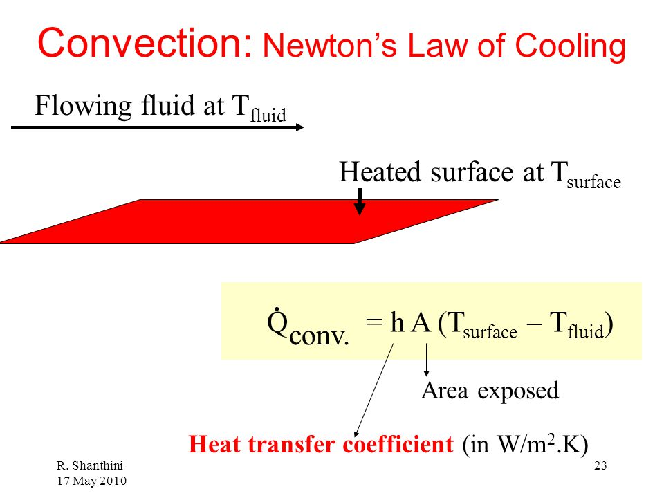 Convection: Newton's Law of Cooling