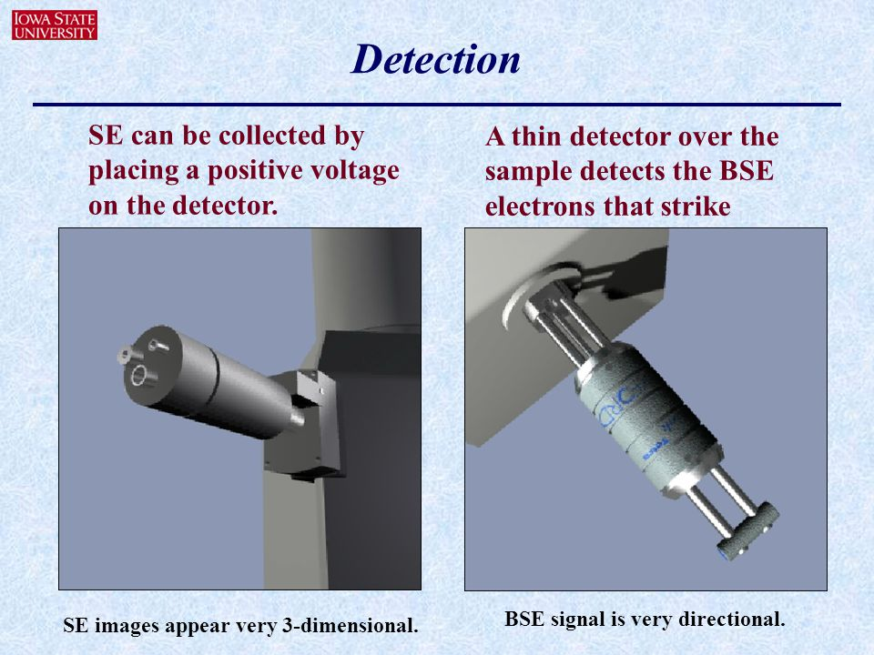 Detection SE can be collected by placing a positive voltage on the detector. A thin detector over the sample detects the BSE electrons that strike.