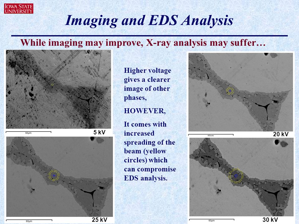 Imaging and EDS Analysis