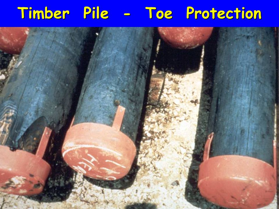 Timber Pile - Toe Protection