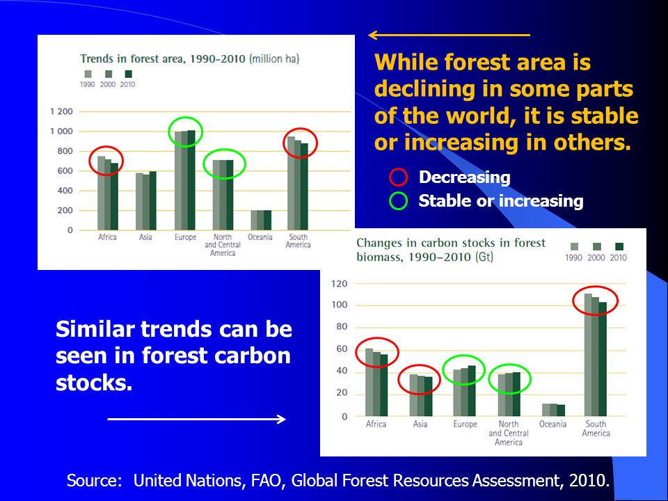 Source: United Nations, FAO, Global Forest Resources Assessment, 2010.