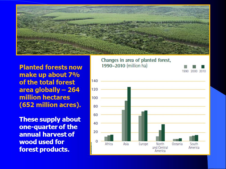 Planted forests now make up about 7% of the total forest area globally – 264 million hectares (652 million acres).