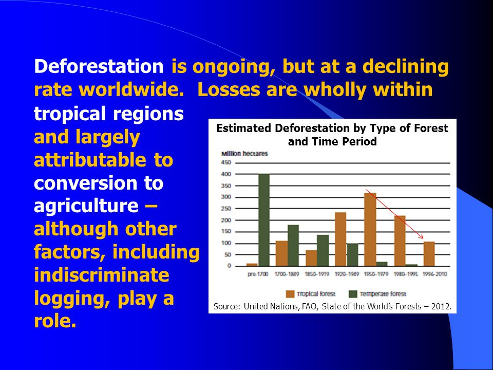 Estimated Deforestation by Type of Forest and Time Period