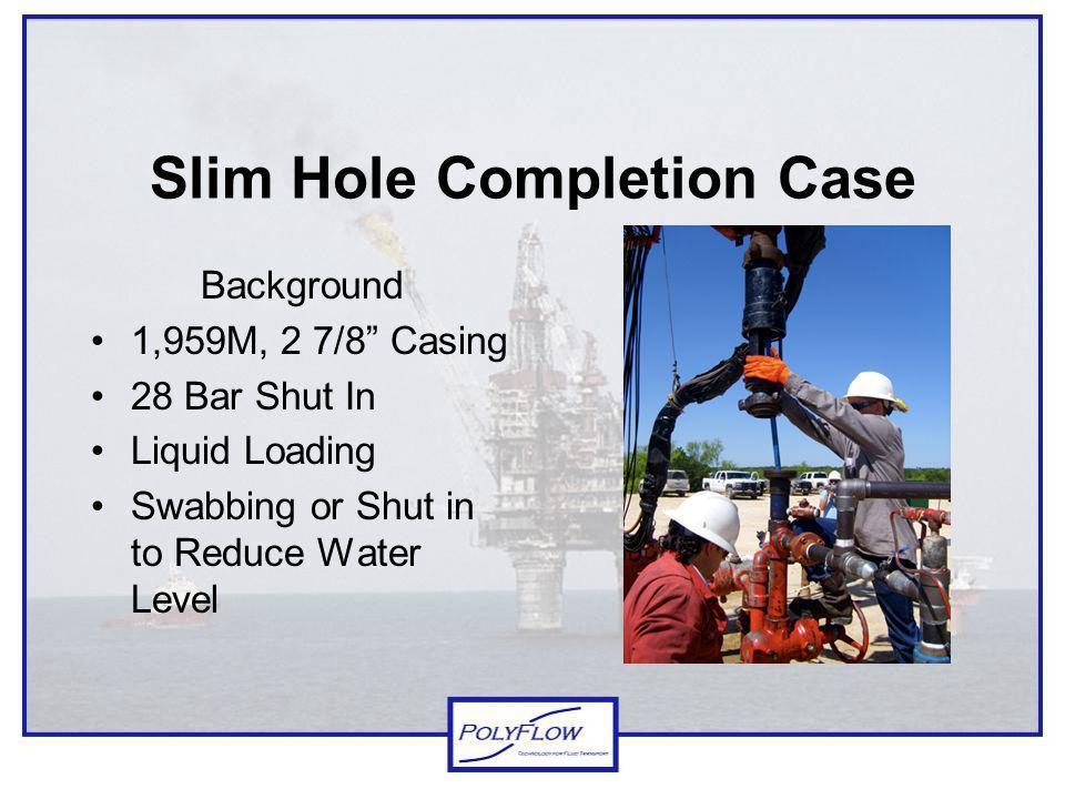 Slim Hole Completion Case