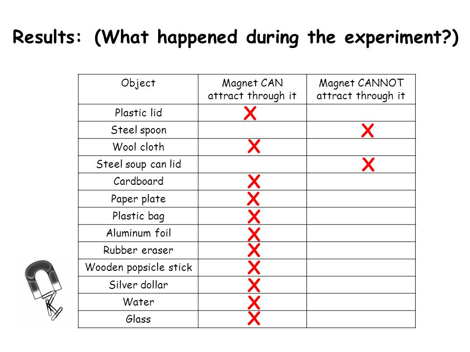 Results: (What happened during the experiment )