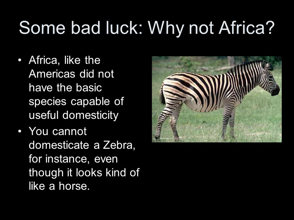 Some bad luck: Why not Africa