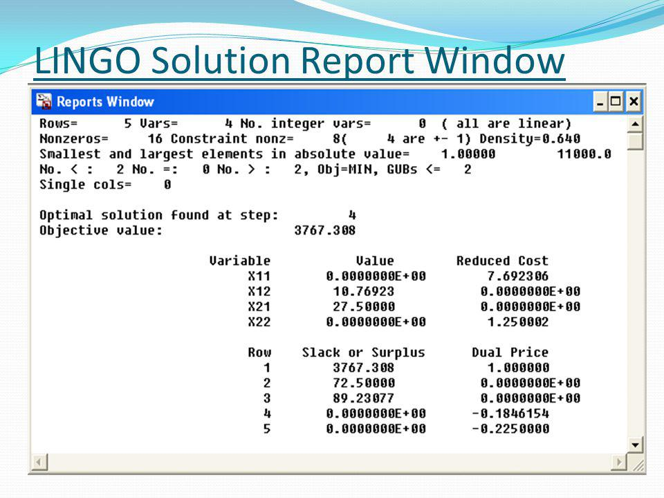 LINGO Solution Report Window