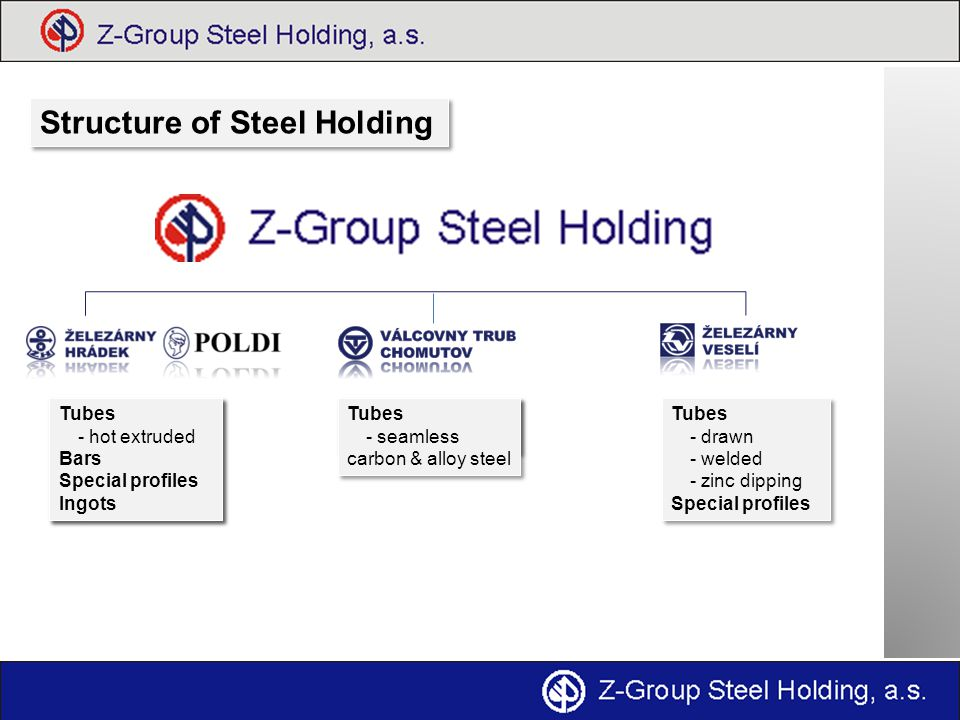 Structure of Steel Holding