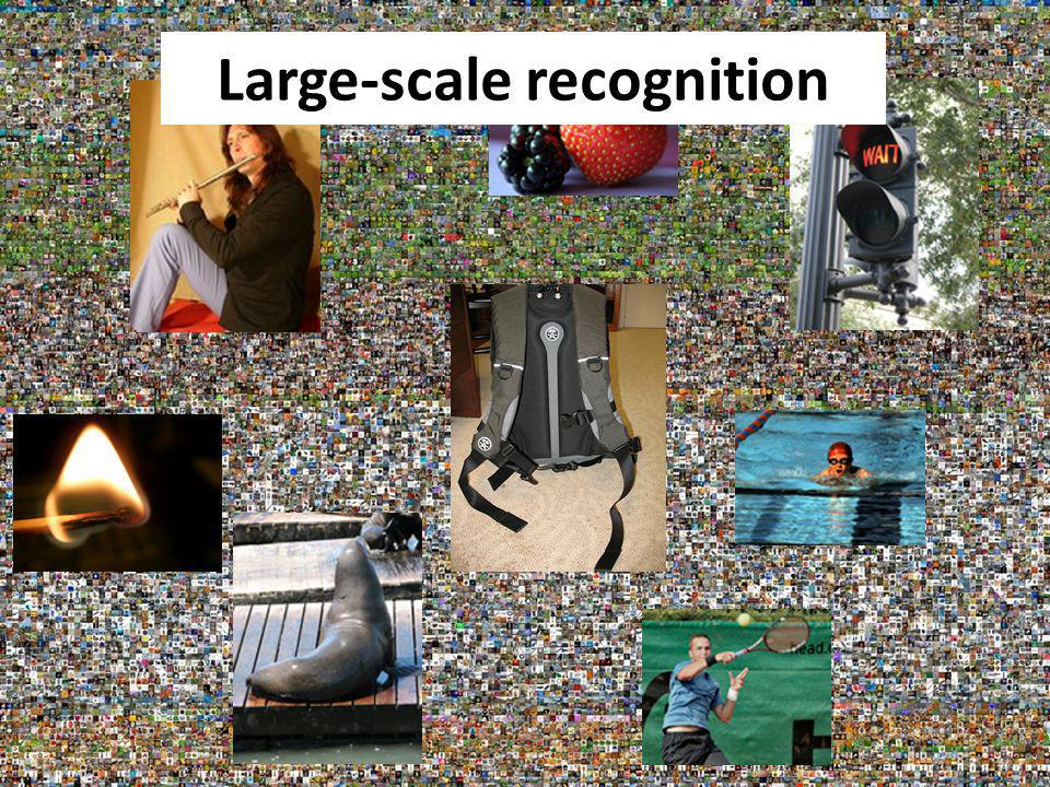 Large-scale recognition