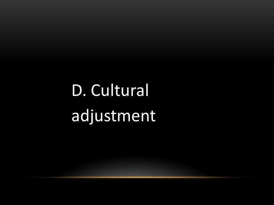 D. Cultural adjustment