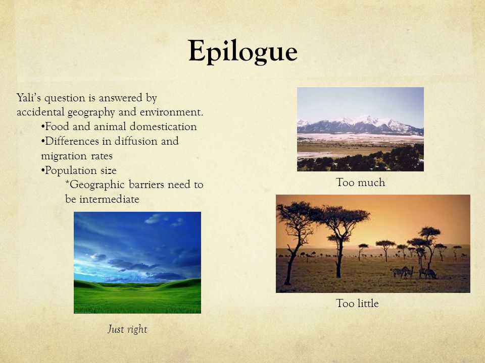 Epilogue Yali's question is answered by accidental geography and environment. Food and animal domestication.