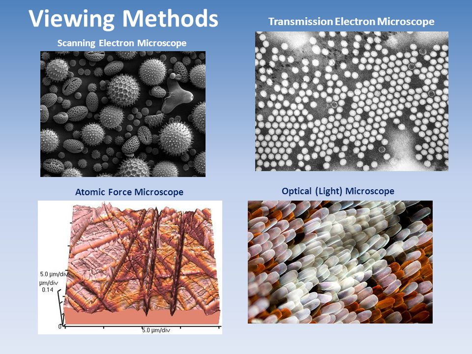 Viewing Methods Transmission Electron Microscope