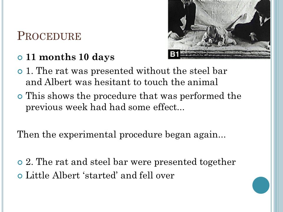 Procedure 11 months 10 days. 1. The rat was presented without the steel bar and Albert was hesitant to touch the animal.