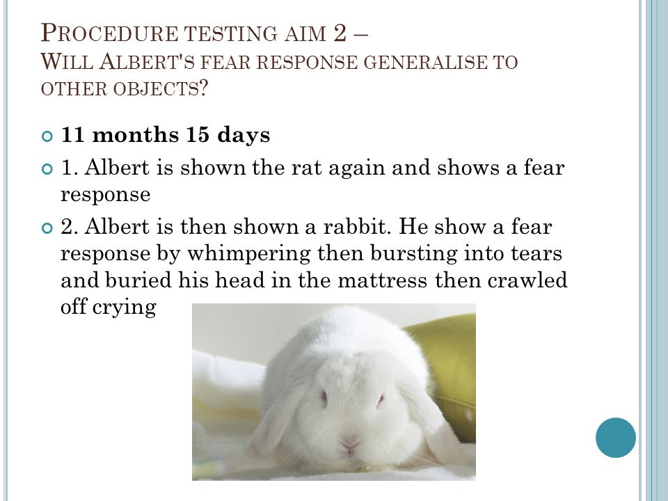 Procedure testing aim 2 – Will Albert s fear response generalise to other objects