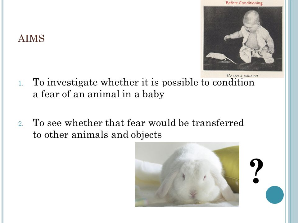aims To investigate whether it is possible to condition a fear of an animal in a baby.