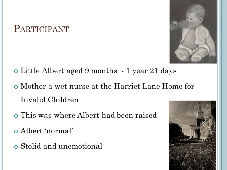 Participant Little Albert aged 9 months - 1 year 21 days
