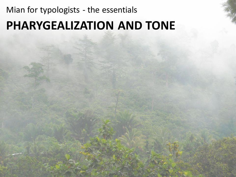Pharygealization and tone