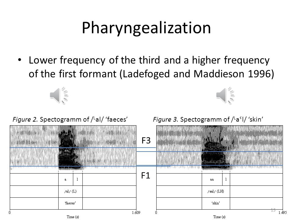 Pharyngealization Lower frequency of the third and a higher frequency of the first formant (Ladefoged and Maddieson 1996)