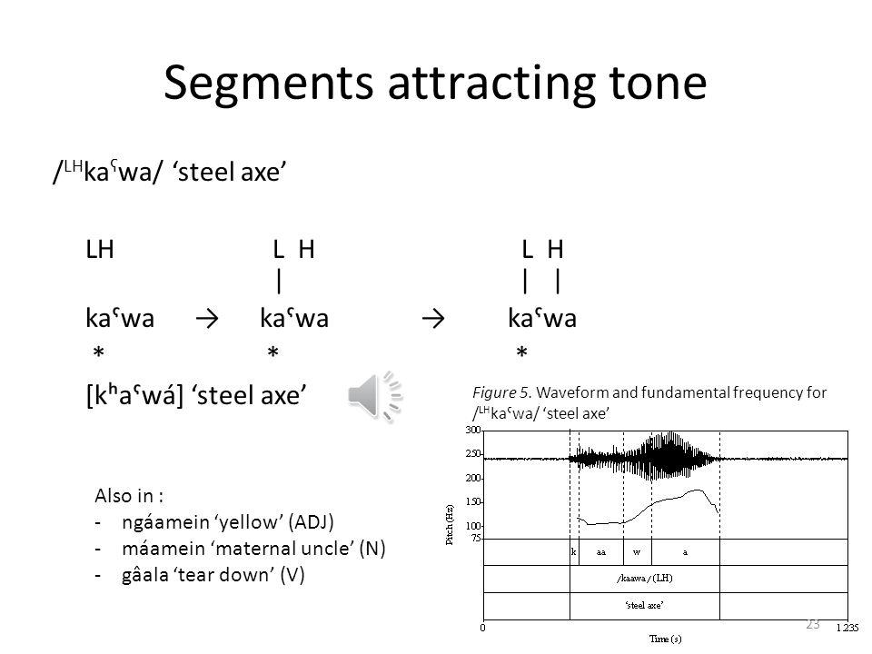 Segments attracting tone
