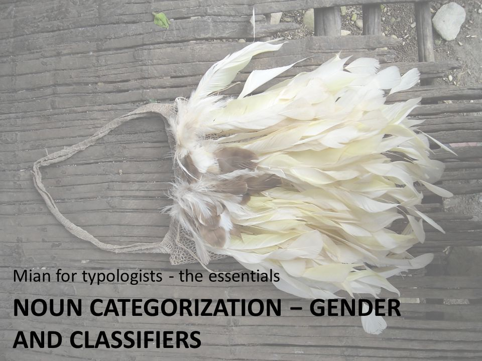 Noun categorization − gender and classifiers