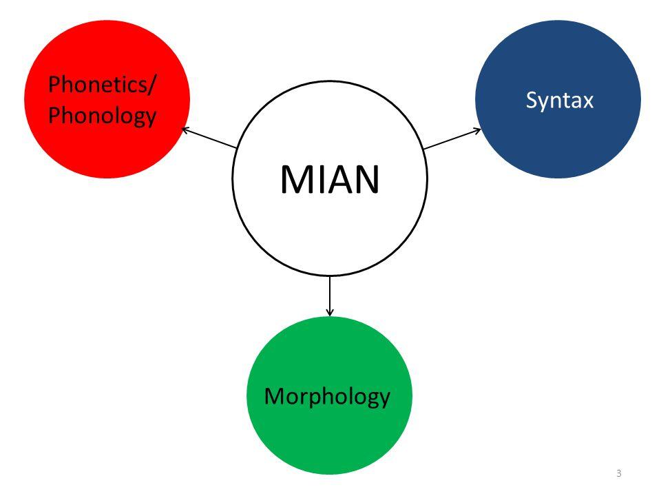 MIAN Phonetics/ Phonology Syntax Morphology
