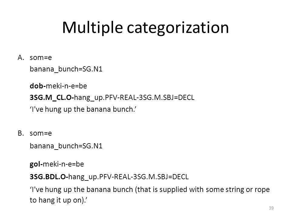 Multiple categorization