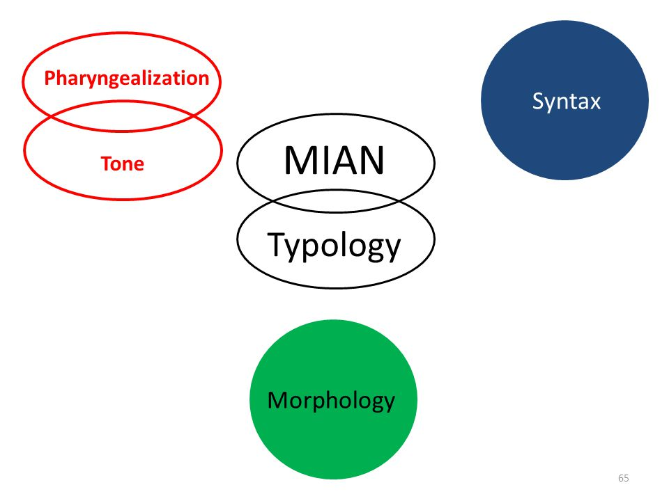 Pharyngealization Syntax MIAN Tone Typology Morphology