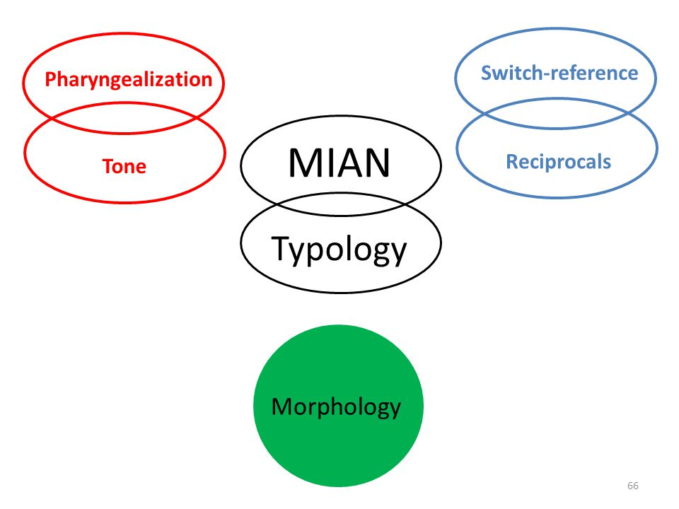 MIAN Typology Morphology Switch-reference Pharyngealization