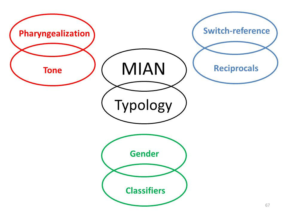 MIAN Typology Switch-reference Pharyngealization Reciprocals Tone