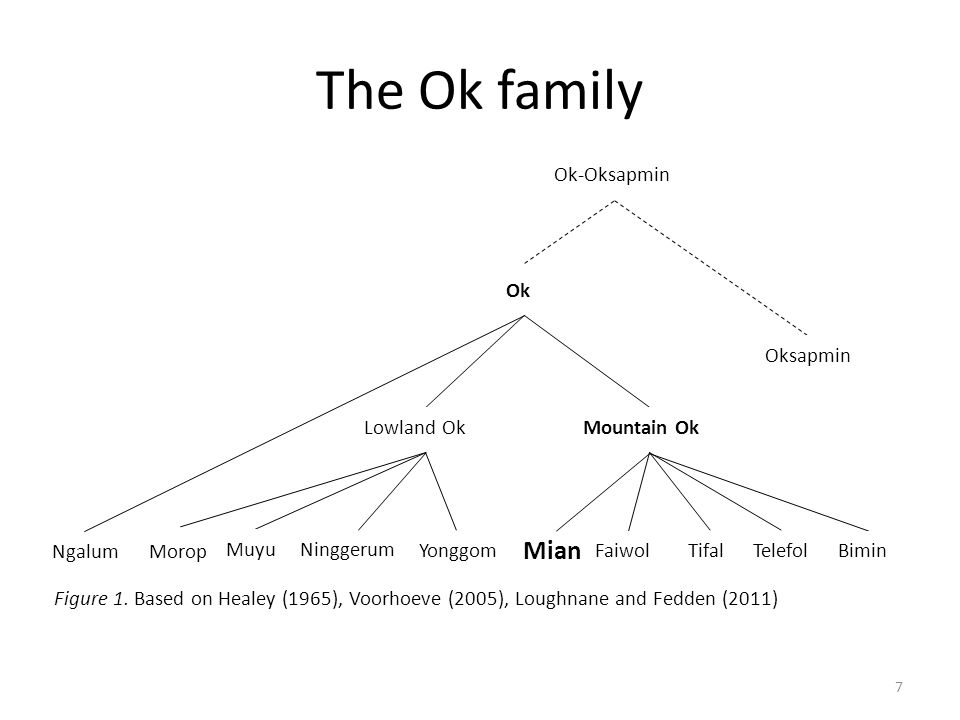 The Ok family Mian Ok Lowland Ok Mountain Ok Bimin Telefol Tifal